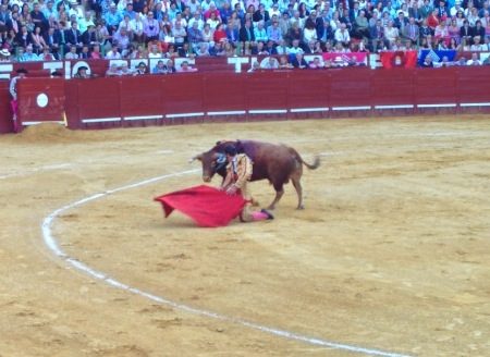 Perhaps he is the best bullfighter in the world, today.